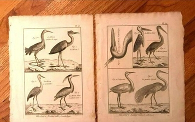 Pair of 18thc French Copperplate Engravings, Herons &
