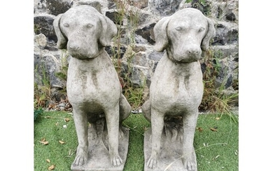 Pair of moulded stone seated Dogs {70 cm H x 24 cm W x 44 cm...