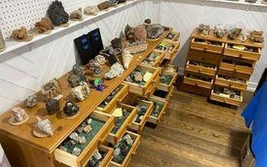 The Norman Govier Fossil and Mineral Collection; A good, lar...
