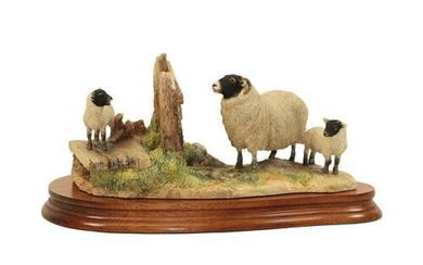 Border Fine Arts 'Wrong Side of the Fence' (Ewe and...